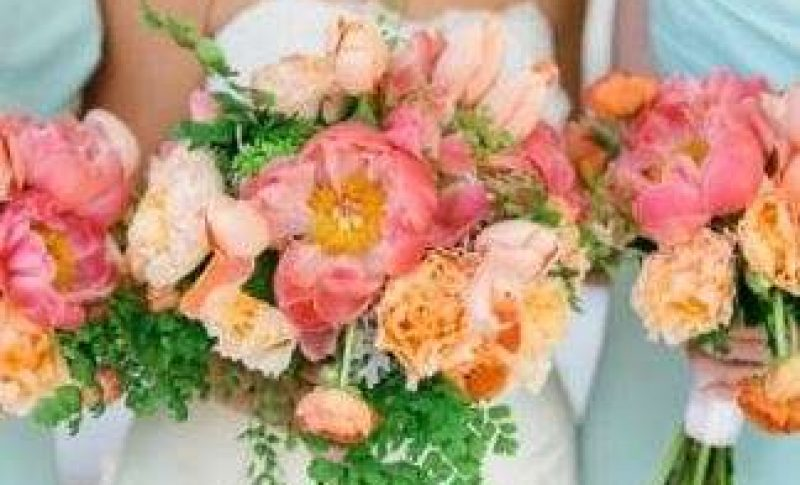 Anything with Plants and Flowers Premier Bride Jacksonville