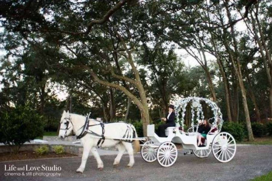 Pinto Carriage Works Premier Bride Jacksonville