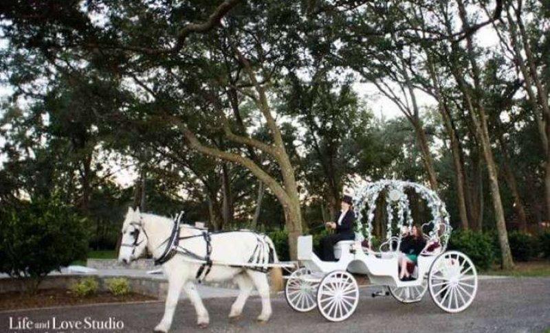 Pinto Carriage Works Premier Bride Jacksonville