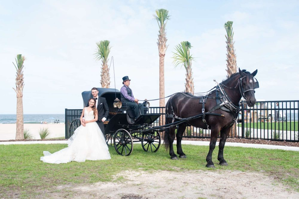 couple with horse and carriage
